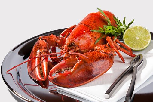 Tarragon「Lobster dish」:スマホ壁紙(16)