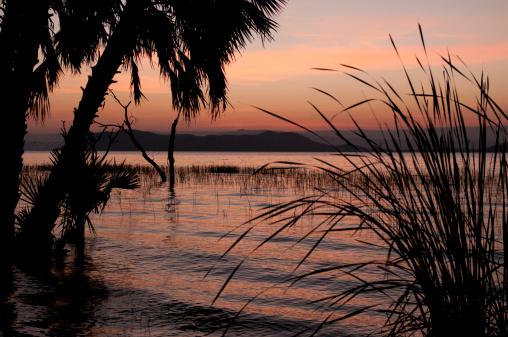 Lake Baringo「Lake Baringo, Kenya, Africa」:スマホ壁紙(3)