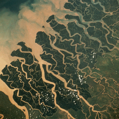 Deforestation「Satellite View of the Mouth of the Ganges River」:スマホ壁紙(12)