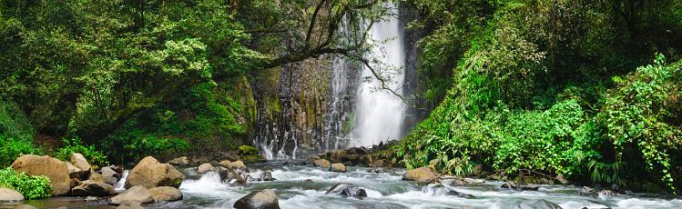 Eco Tourism「XXXL: Rushing water from a tropical waterfall」:スマホ壁紙(18)