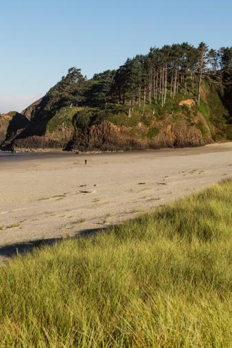 Cannon Beach「Beach walker and dog on empty beach」:スマホ壁紙(16)