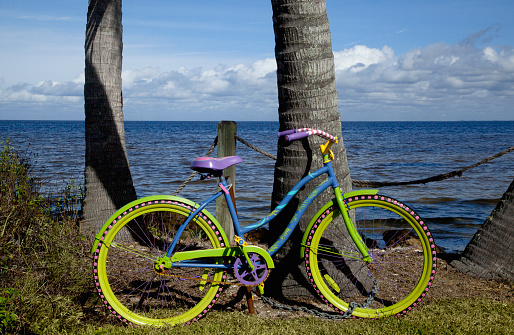 サイクリング「Colorful bicycle leaning against palm tree trunks; ocean beyond」:スマホ壁紙(2)