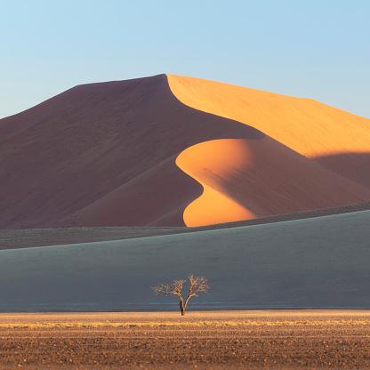 Namib-Naukluft National Park「The Namib Desert Sand Dunes, Sossusvlei, Namibia, Africa」:スマホ壁紙(13)