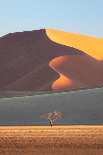 Travel Destinations「The Namib Desert Sand Dunes, Sossusvlei, Namibia, Africa」:スマホ壁紙(19)