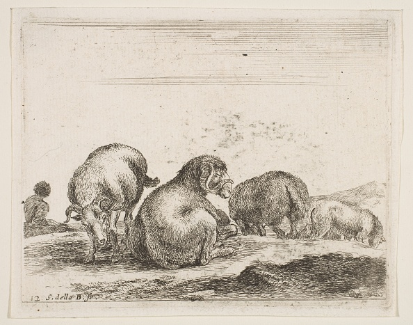 Pasture「Plate 12: Sheep And Ram In A Pasture」:写真・画像(15)[壁紙.com]