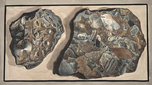 Variation「Piece Of Marble Composed Of Fragments Of Various Sorts Of Marble Found In The Fossa Grande」:写真・画像(17)[壁紙.com]