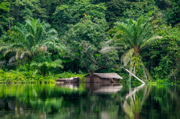 Hut at the shoreline of Congo River:スマホ壁紙(壁紙.com)