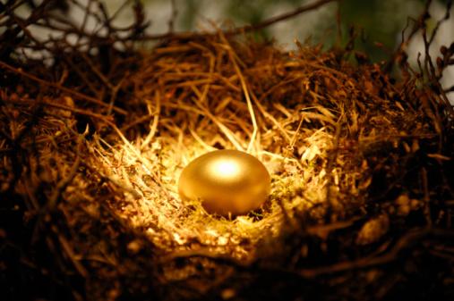 Fairy Tale「Golden egg in nest」:スマホ壁紙(16)