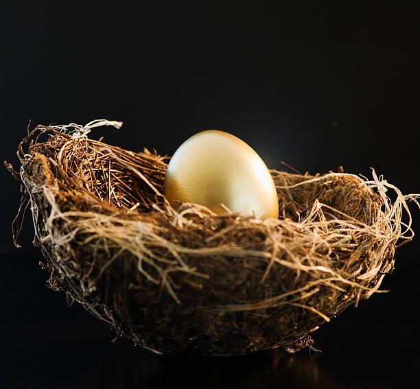 Golden egg in a bird nest:スマホ壁紙(壁紙.com)