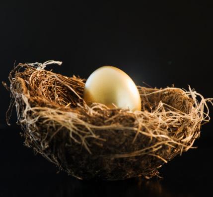 Easter Basket「Golden egg in a bird nest」:スマホ壁紙(5)