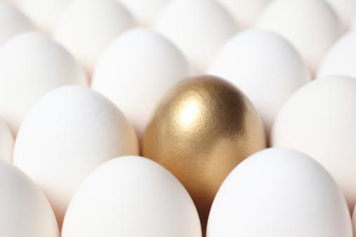 Animal Egg「Golden Egg in the Middle of Many White Eggs」:スマホ壁紙(18)