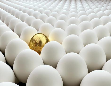 Animal Egg「Golden Egg」:スマホ壁紙(5)