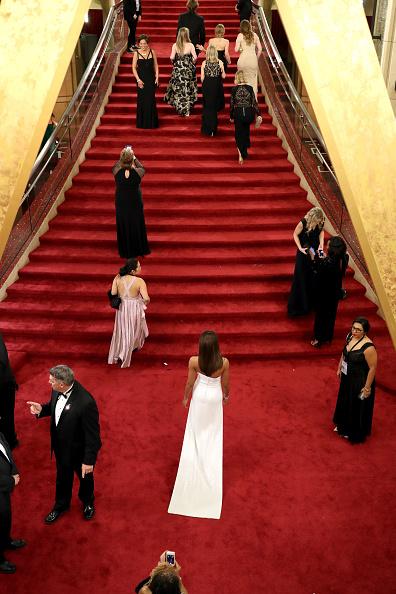 レッドカーペット「89th Annual Academy Awards - Red Carpet」:写真・画像(5)[壁紙.com]