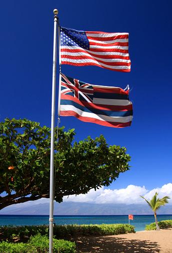 Kihei「United States and state of Hawaii flags on Maui」:スマホ壁紙(11)
