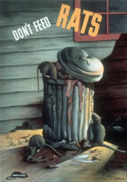 Kula「'Don't Feed Rats' Poster」:写真・画像(5)[壁紙.com]
