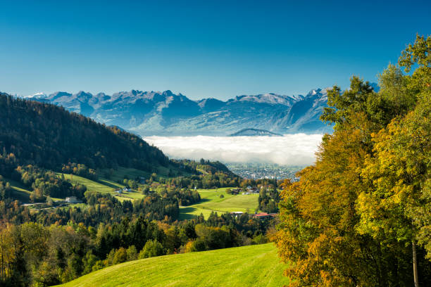 Rhine Valley with some fog and swiss mountains:スマホ壁紙(壁紙.com)