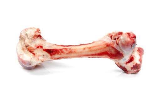 Raw Food「Dog bone」:スマホ壁紙(12)