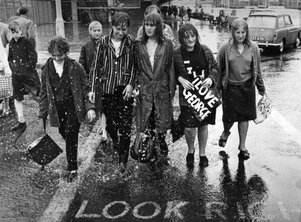 Torrential Rain「Wet Beatle Fans」:写真・画像(12)[壁紙.com]