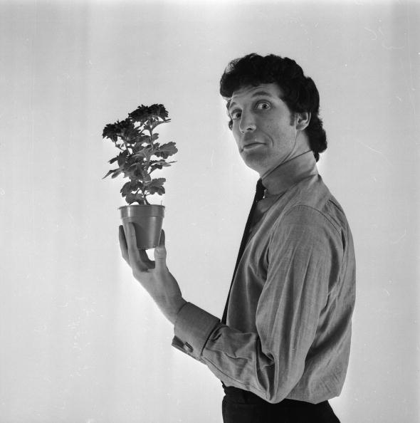Potted Plant「Jones The Gardener」:写真・画像(19)[壁紙.com]