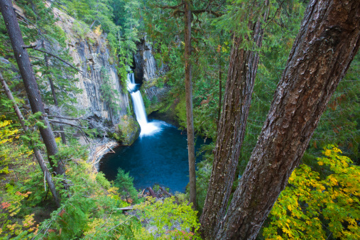 Umpqua National Forest「Toketee Falls Umpqua National Forest」:スマホ壁紙(15)
