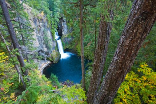Umpqua National Forest「Toketee Falls Umpqua National Forest」:スマホ壁紙(15)