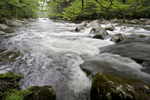Gatlinburg「Smoky Mountains Creeks in Spring」:スマホ壁紙(17)
