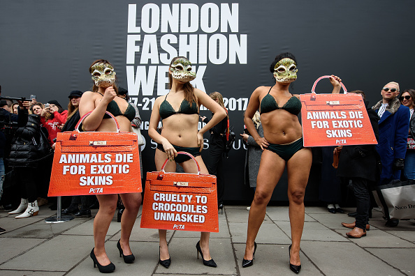 London Fashion Week「Animal Charity Protests At Fashion Week」:写真・画像(4)[壁紙.com]