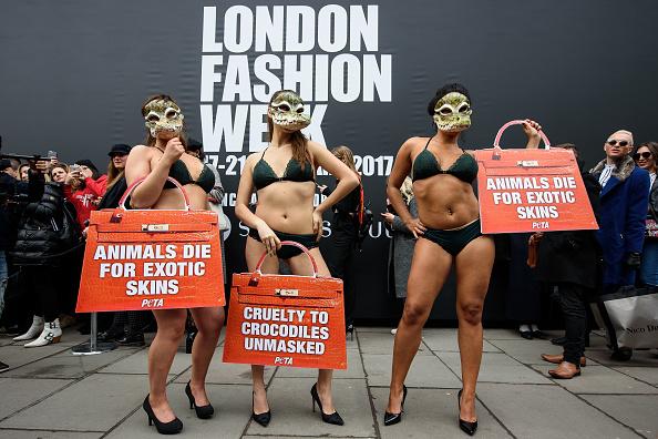 ロンドンファッションウィーク「Animal Charity Protests At Fashion Week」:写真・画像(9)[壁紙.com]