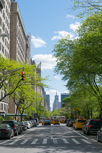 Sunny「Fifth Avenue traffic goes through among the line of fresh green trees at Central Park East Upper Manhattan New York.」:スマホ壁紙(10)