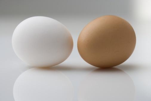 ペア「A white and brown egg」:スマホ壁紙(10)