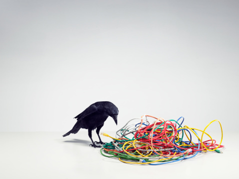 Decisions「A tangled pile of cables with a black bird」:スマホ壁紙(7)