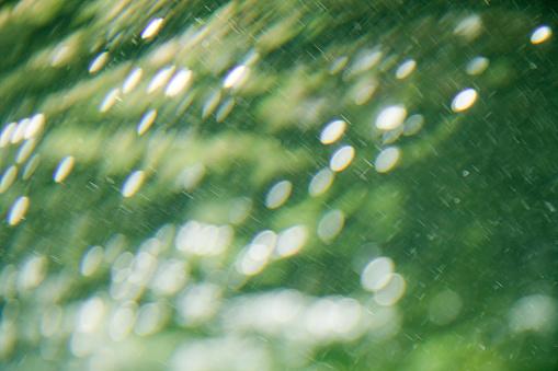 Rain「Defocused green background」:スマホ壁紙(2)