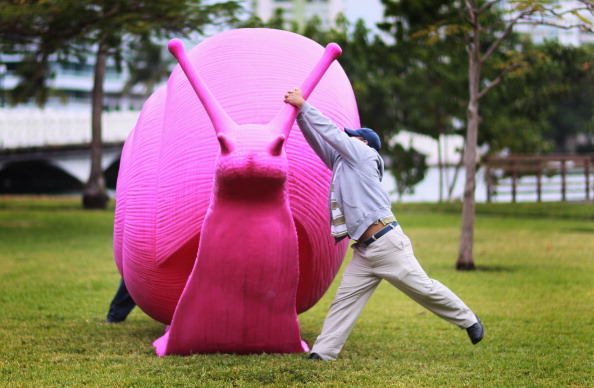 カタツムリ「Vandals Targeting Pink Snail Art Installations Throughout Miami」:写真・画像(9)[壁紙.com]