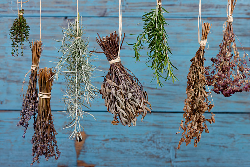 Vervain「Herbs hanging out to dry」:スマホ壁紙(15)