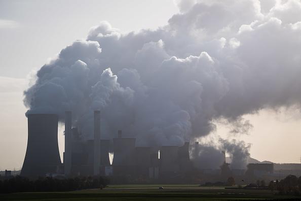 Plant「As COP 23 Participants Debate Climate Future, A Region Nearby Depends On Coal」:写真・画像(5)[壁紙.com]