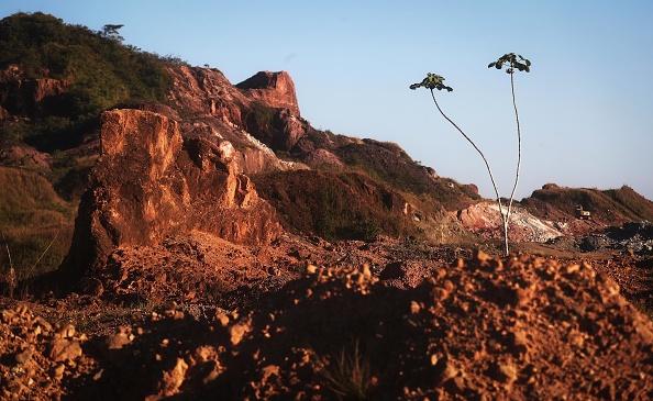 Amazon Rainforest「Fighting Recession, Level of Deforestation in Brazil Reaches Nine Year High」:写真・画像(17)[壁紙.com]