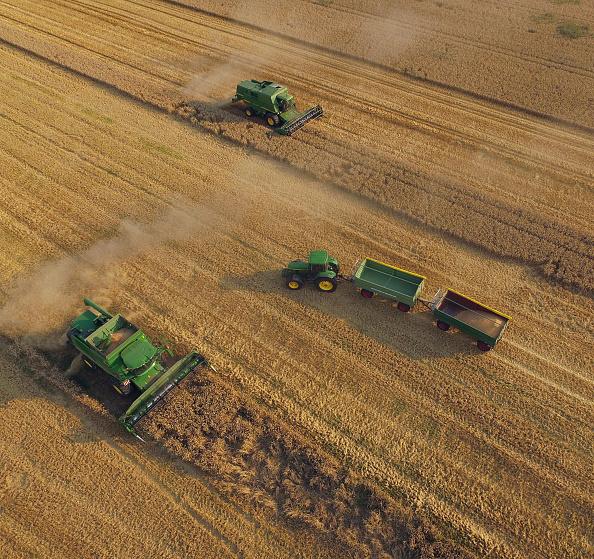 Harvesting「Farmers Association To Announce Grain Harvest Results」:写真・画像(3)[壁紙.com]