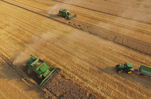 Farm「Farmers Association To Announce Grain Harvest Results」:写真・画像(4)[壁紙.com]
