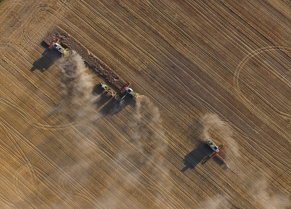 Agriculture「Grain Harvest Concludes In Northern Germany」:写真・画像(18)[壁紙.com]
