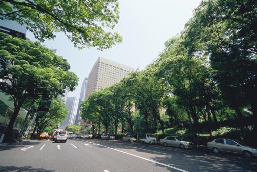 Japanese Culture「Shinjuku, Tokyo, Japan」:スマホ壁紙(17)