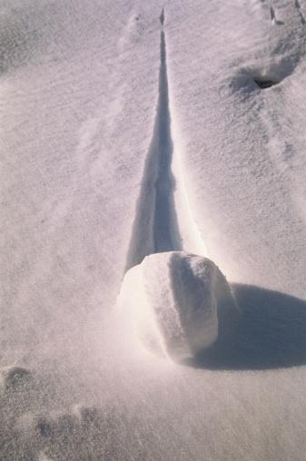 Snowball「Snowball creating trail in snow, close-up」:スマホ壁紙(7)