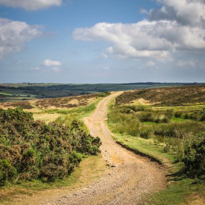 North Yorkshire「Dirt trail through North York Moors National Park.」:スマホ壁紙(15)