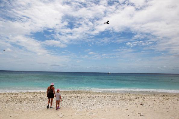 ビーチ「Scenes Of Lady Elliot Barrier Reef Eco Island」:写真・画像(19)[壁紙.com]