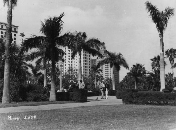 Archival「Holiday Resort」:写真・画像(8)[壁紙.com]