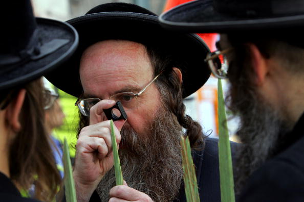 Frond「Ultra-Orthodox Jews Prepare For Sukkot Festival」:写真・画像(17)[壁紙.com]