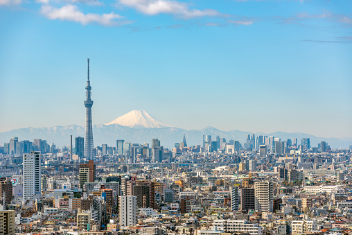 Tokyo - Japan「Tokyo Sky Tree and Mt Fuji」:スマホ壁紙(7)