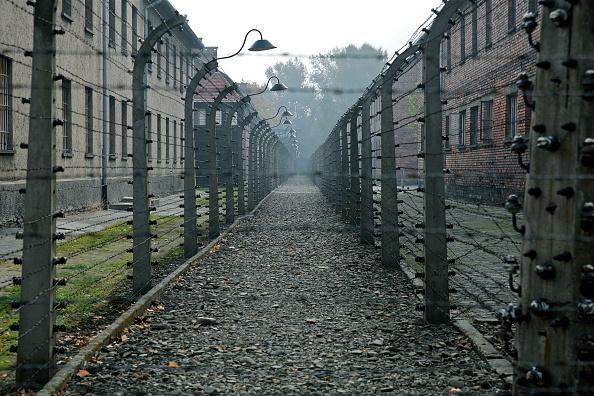 Barbed Wire「Auschwitz-Birkenau Memorial And Museum」:写真・画像(9)[壁紙.com]