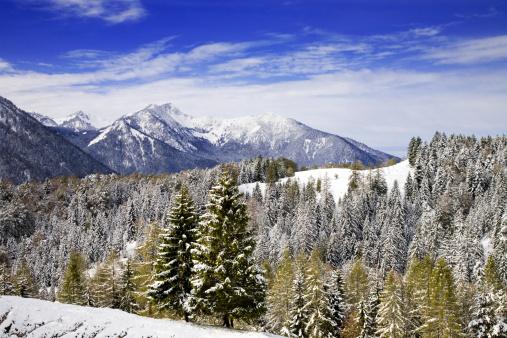 European Alps「Rural Winter Landscape with Snow in Bavaria」:スマホ壁紙(15)