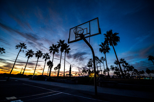 Miami Beach「Basketball court」:スマホ壁紙(10)