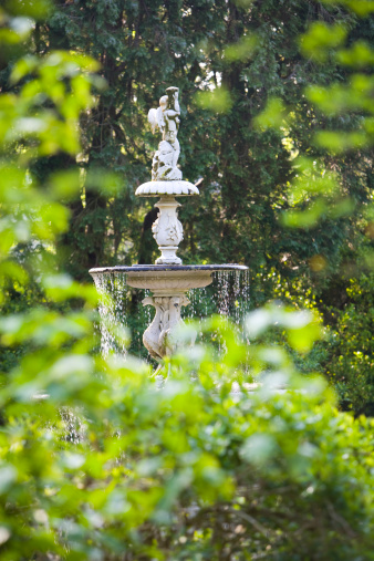 Focus On Background「Water fountain in woods」:スマホ壁紙(11)